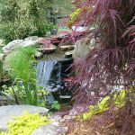 Pond waterfall image