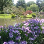 Missouri Botanical Gardens image