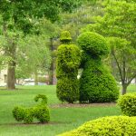 Man, woman, dog topiary image
