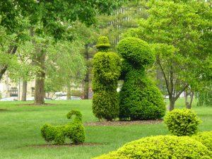 Man, woman, dog topiary image