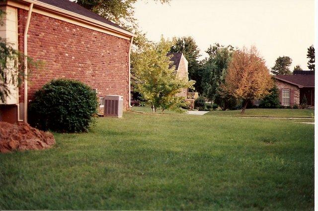 Elysium's Knot Garden (before)