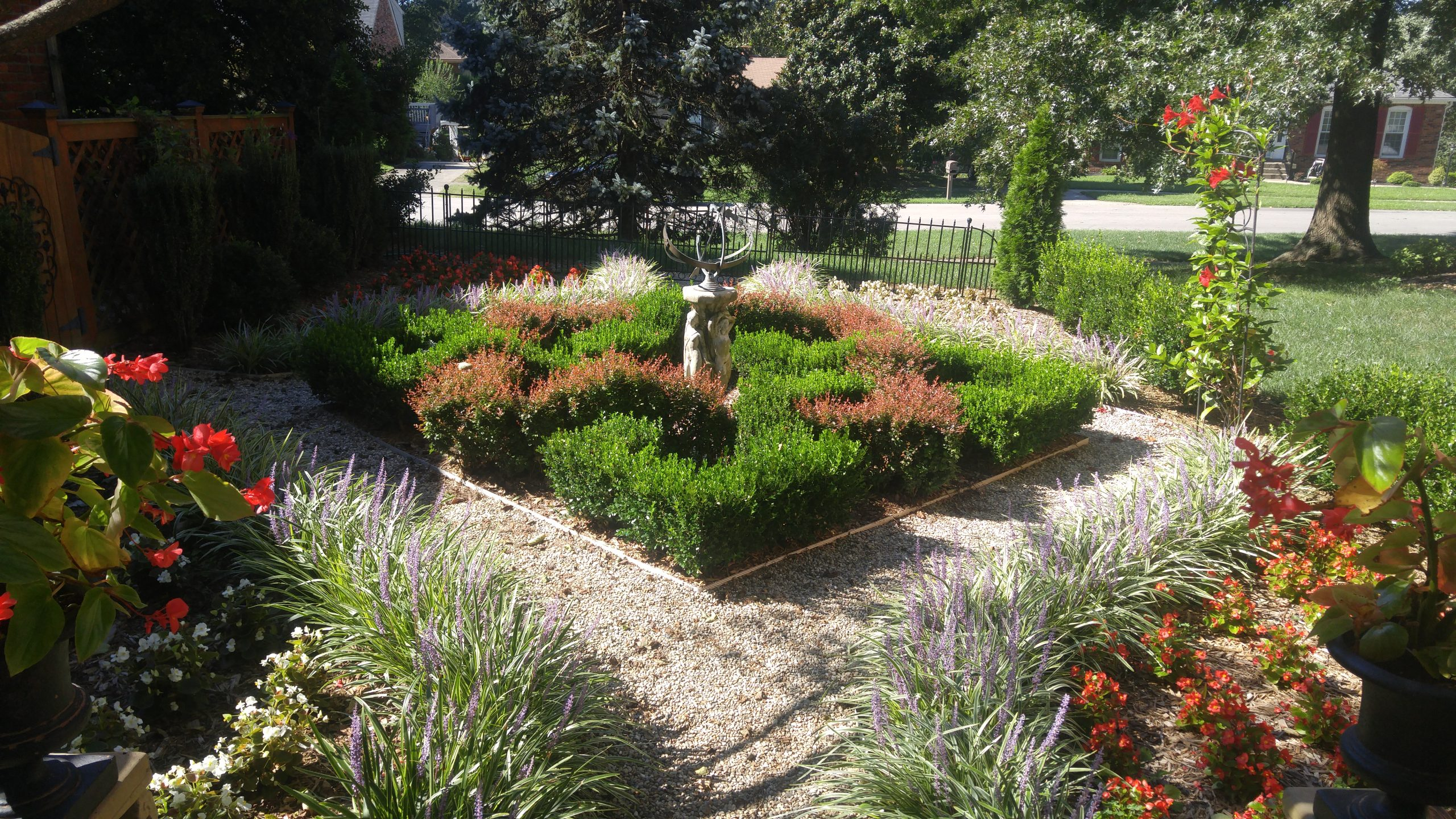 Elysium's Knot Garden (six years & needing to be trimmed)