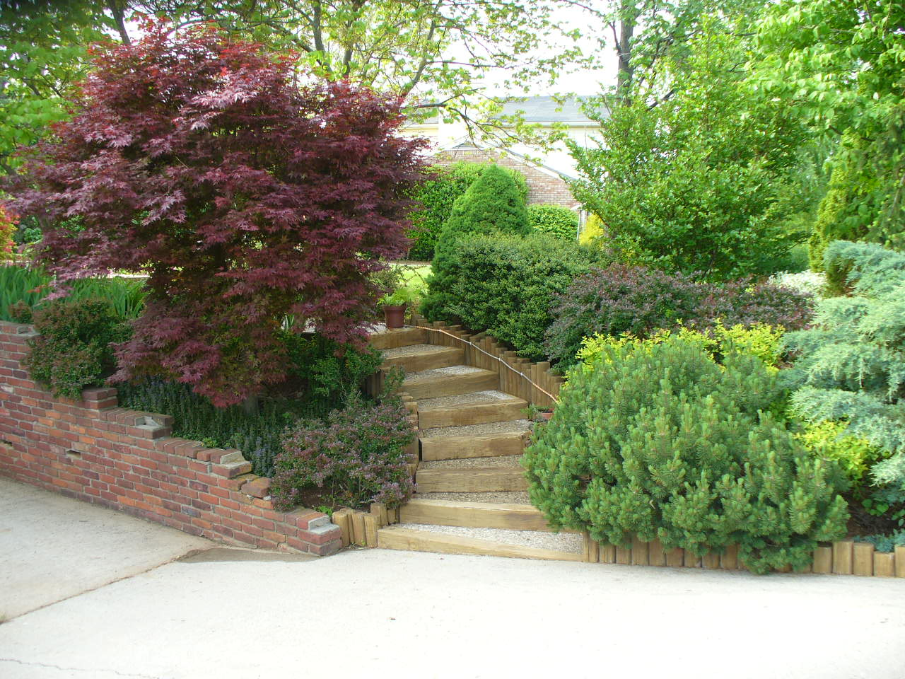 Our gardens, 2008